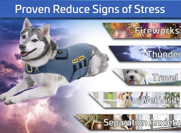 Thunder Vest for Dogs - Signs of Anxiety