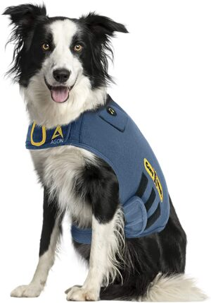 CozyVest® Anxiety Vest for Dogs with Relaxing Music and Calming Scents