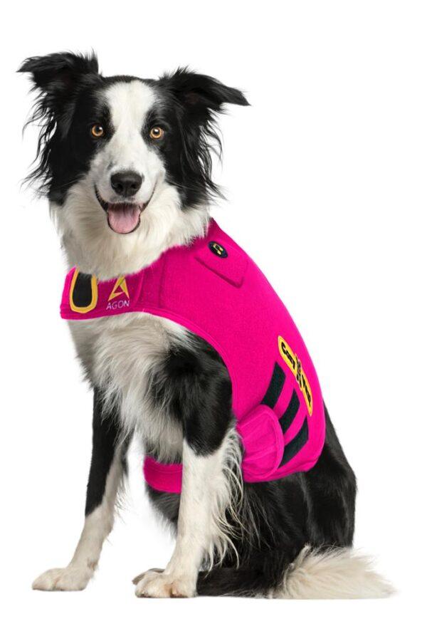 Thunder Vest for Dogs - Border Collie pink