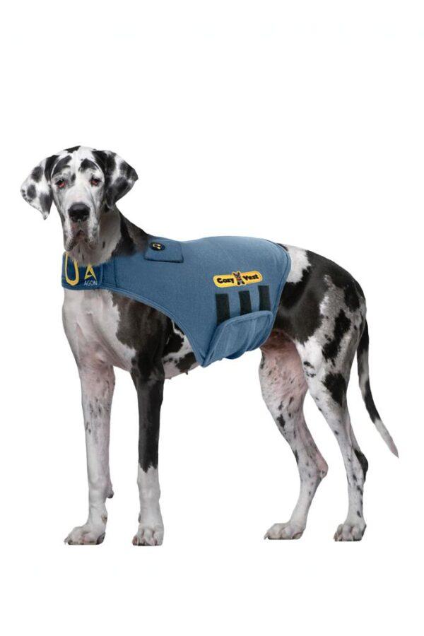 Thunder Vest for Dogs - dane