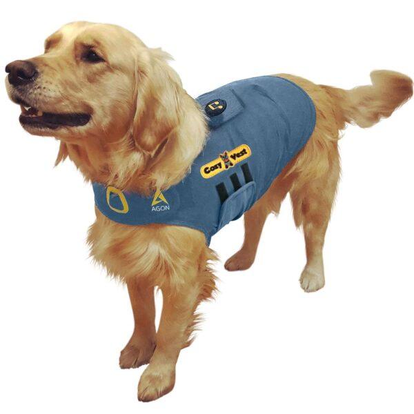 Thunder Vest for Dogs - golden gray