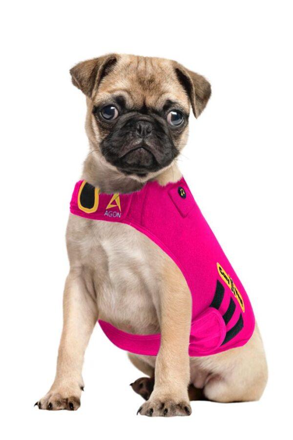 Thunder Vest for Dogs - pug pink
