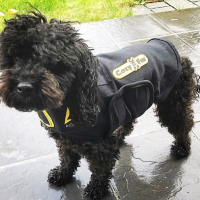 Dog Anxiety Vest - Small dark dog
